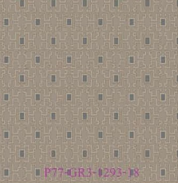 P77-GR3-1293-18
