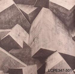LCPE347-501