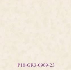 P10-GR3-0909-23