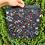Thumbnail: Science project bag