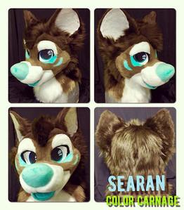 Searan