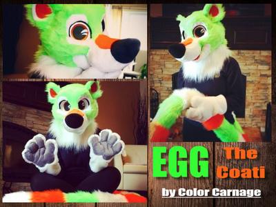 Egg Coati