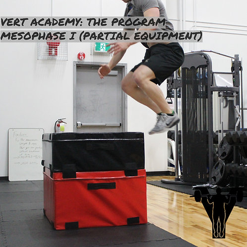 VERT Academy: The Program (Mesophase I Partial Equipment)