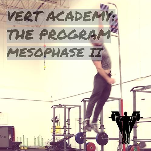 VERT Academy: The Program (Mesophase II)