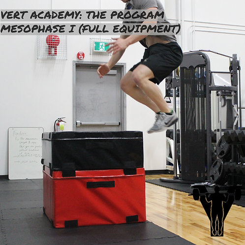 VERT Academy: The Program (Mesophase I Full Equipment)