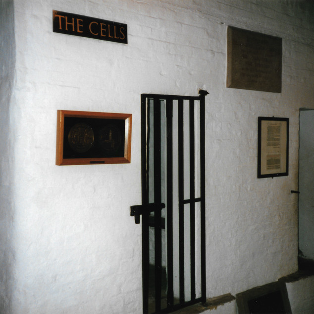 Boston cells