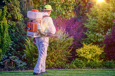 Pest Control Garden Spraying by Professi