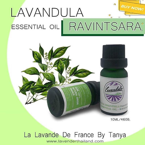 LAVANDULA - PURE 100% ESSENTIAL OIL - 10ML - RAVINTSARA