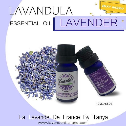 LAVANDULA - PURE 100% ESSENTIAL OIL - 10ML - LAVENDER