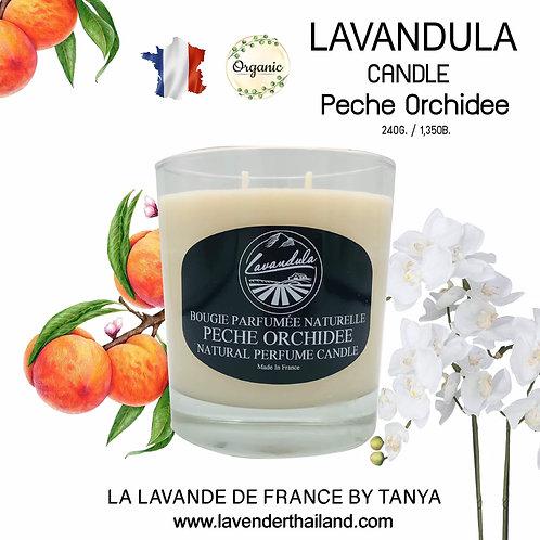 LAVANDULA CANDLE PEACH ORCHID 240GR