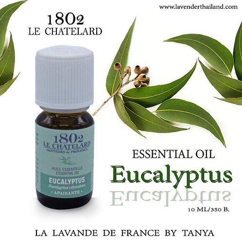 LC 1802 EUCALYPTUS ESSENTIAL OIL 10ML