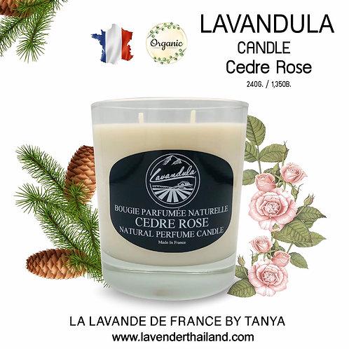 LAVANDULA CEDAR ROSE CANDLE 240GR