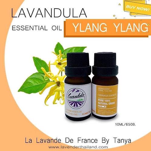 LAVANDULA - PURE 100% ESSENTIAL OIL - 10ML - YLANG