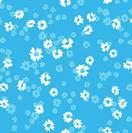 DAISE BLUE