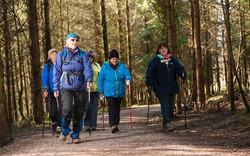 Nordic walking at Haldon 3