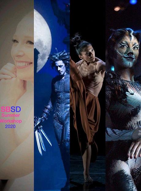 SBSD Summer Workshop 2020