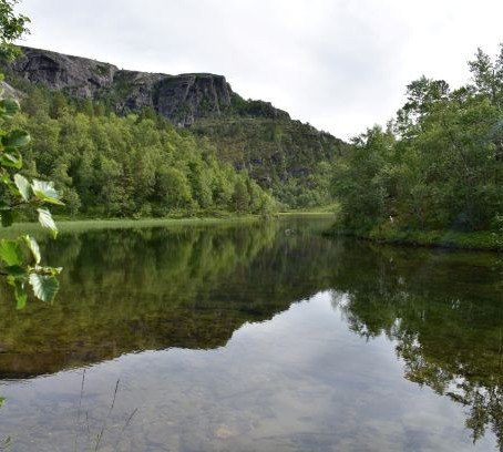 30 min relaxing Walking video Åsjordvatnet, Norway