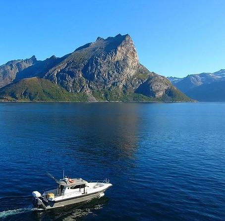 Fishing trip Kvaløya, Norway