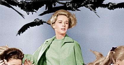 hitchcock hedren-birds-1963.jpg