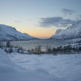 DISCOVER THE FJORDS