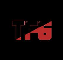 TFG logo.png