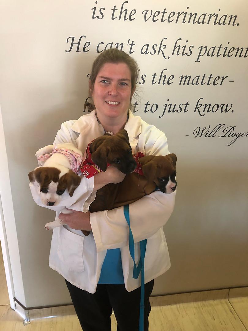 Dr. Kris Clements
