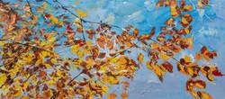 """""""Variaciones de otoño"""""""