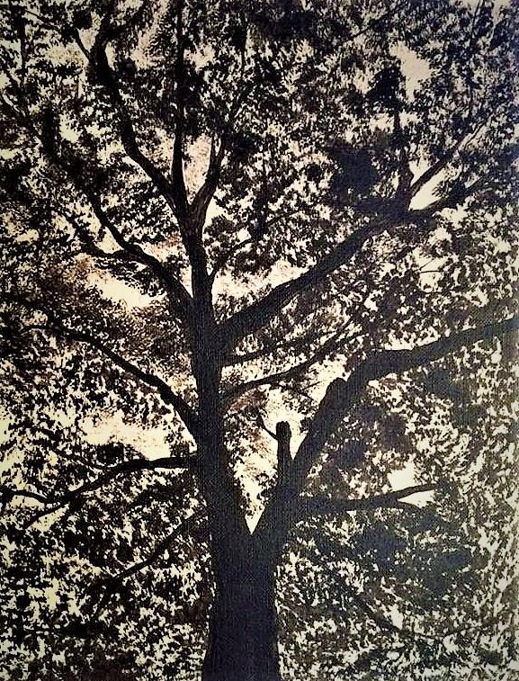 First Black tree 1 (vendido)