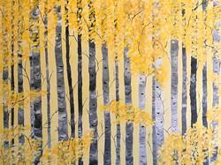 """Yellow birches"""