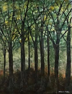 """""""Green woods I"""""""