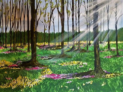"""Sun through the woods I"""