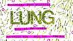 ROCKRIDGE BOWL presents Lung: LIVE @ The Grotto! This FRIDAY 11/6 @ 10pm EST / 7pm PST!