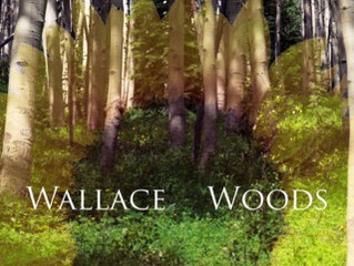 """Thanks to Cincinnati CityBeat for premiering Wallace Woods' """"Trouble You No More""""."""