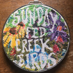 Sunday Fed Creek Birds is the new collaborative project from Zachary D. Gabbard of Buffalo Killers o