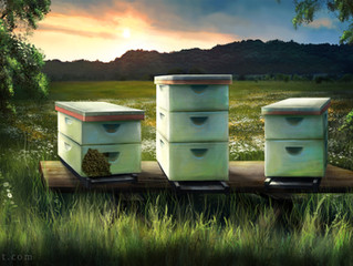 Heritage Beekeepers: Here'e the BUZZ!