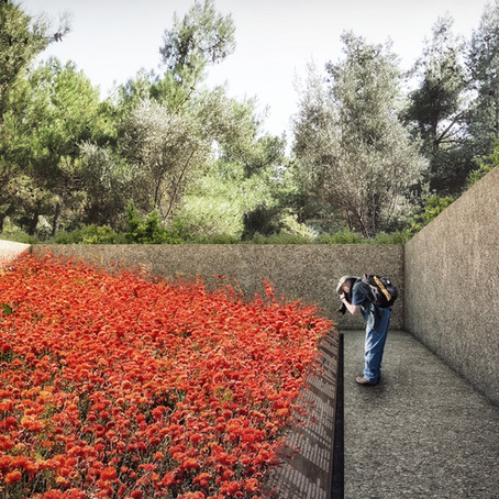 Gallipoli Memorial Gardens