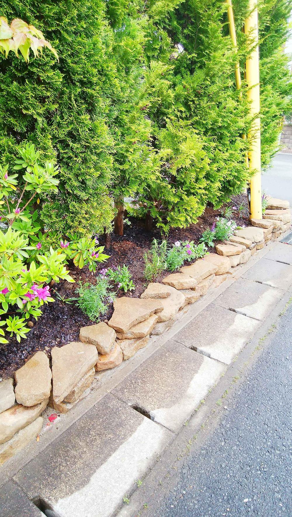 土留め花壇の植栽3