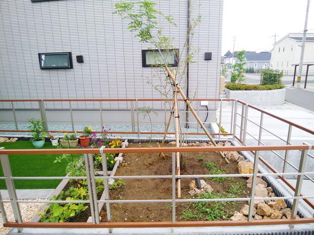 お庭のシンボルツリーと花壇