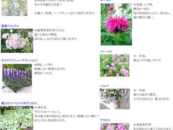 富谷市外構工事 土留め・花壇の植栽作業