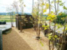 植木と砂利の庭