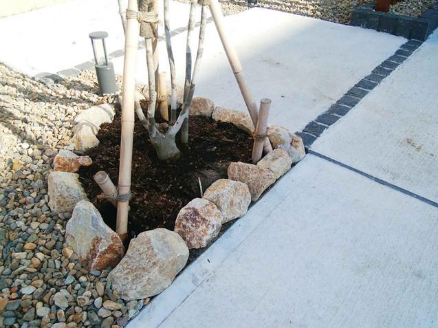シンボルツリー下のゴロタ石のミニ花壇