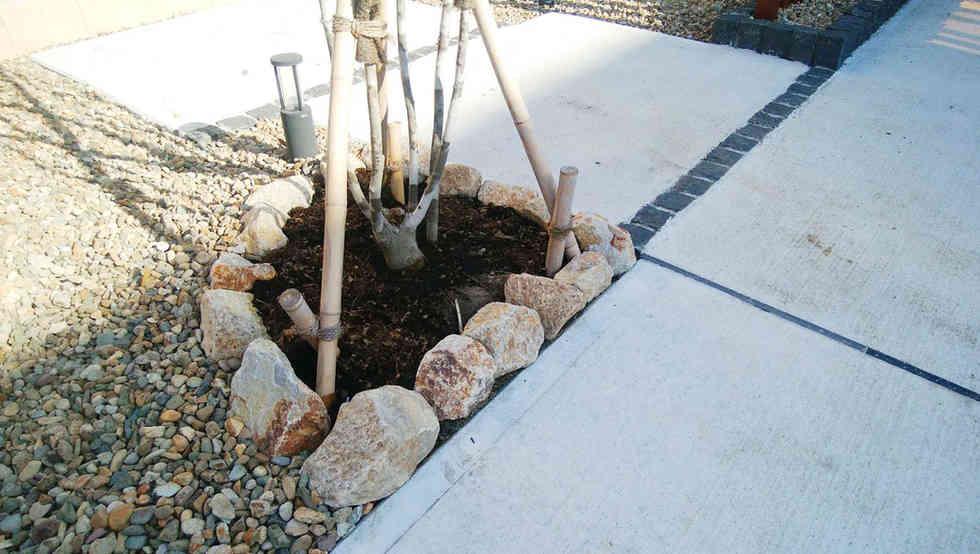 植木とゴロタ石のアクセント