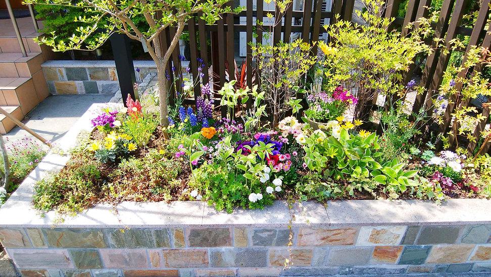 花壇とたくさんの花や植木