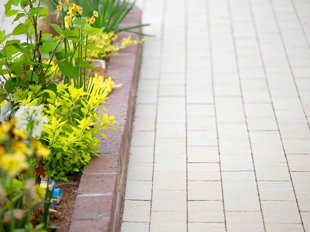 通路脇の花壇