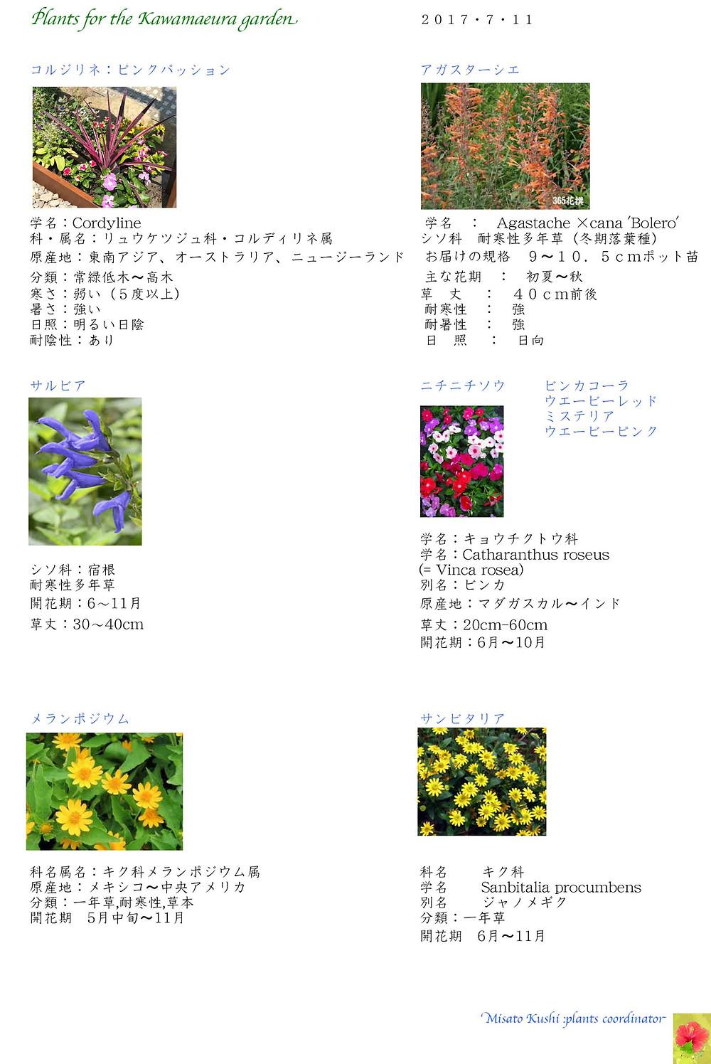仙台市H様邸 植物図鑑