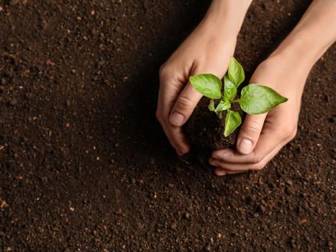 土壌汚染対策