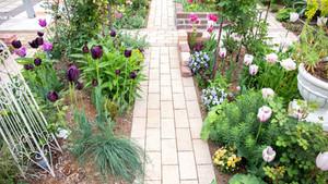 花壇・ガーデン