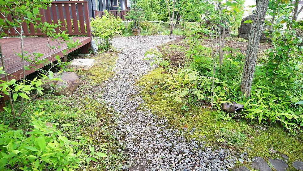 雑木や苔のきれいなお庭