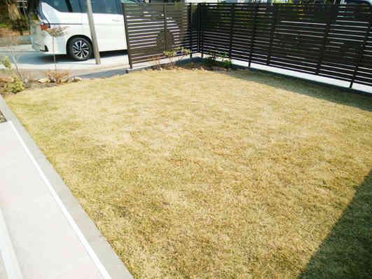 ミニ花壇と芝生