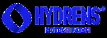 blue logo .png
